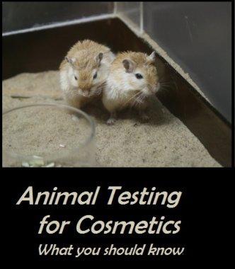 Common Animal Testing for Cosmetics