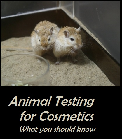 Common Animal Testing for Cosmetics