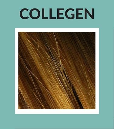 Collegen Natural Ingredients for Skin Care