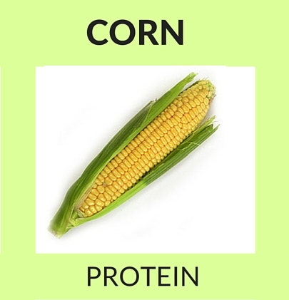 Corn Protein